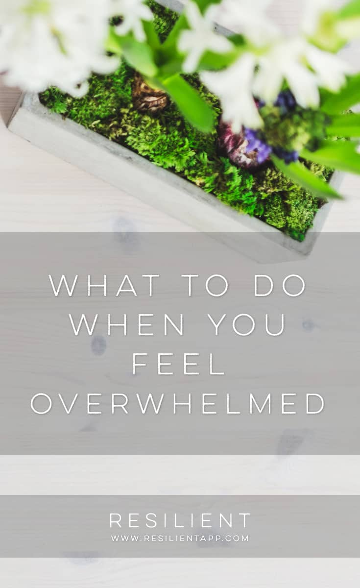 Sometimes life overwhelms us and the hits just keep coming.  I found myself in this position one time a few years ago.  Things kept going wrong, I'd break something on my website or business, and I made mistake after mistake after frustrating mistake.  Here's what to do when you feel overwhelmed.