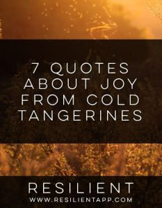 7 Quotes About Joy from Cold Tangerines