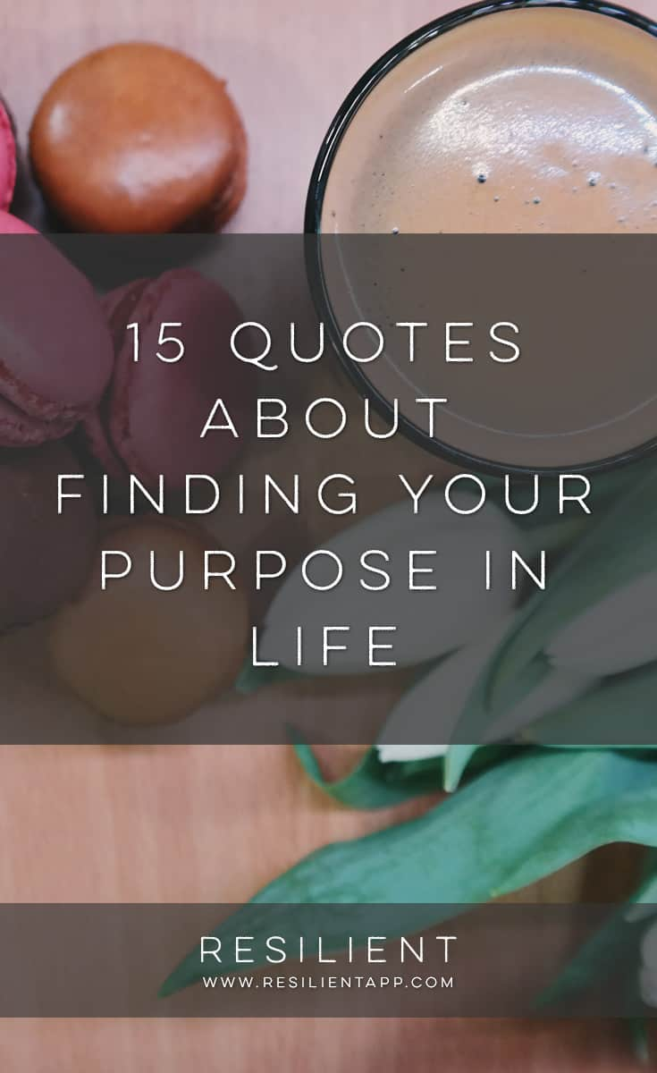 Finding your purpose can make a huge difference in your motivation and energy and overall happiness. It's definitely worth taking the time to think about what it is you're passionate about and what you want to do with your life. Here are 15 quotes about finding your purpose in life.