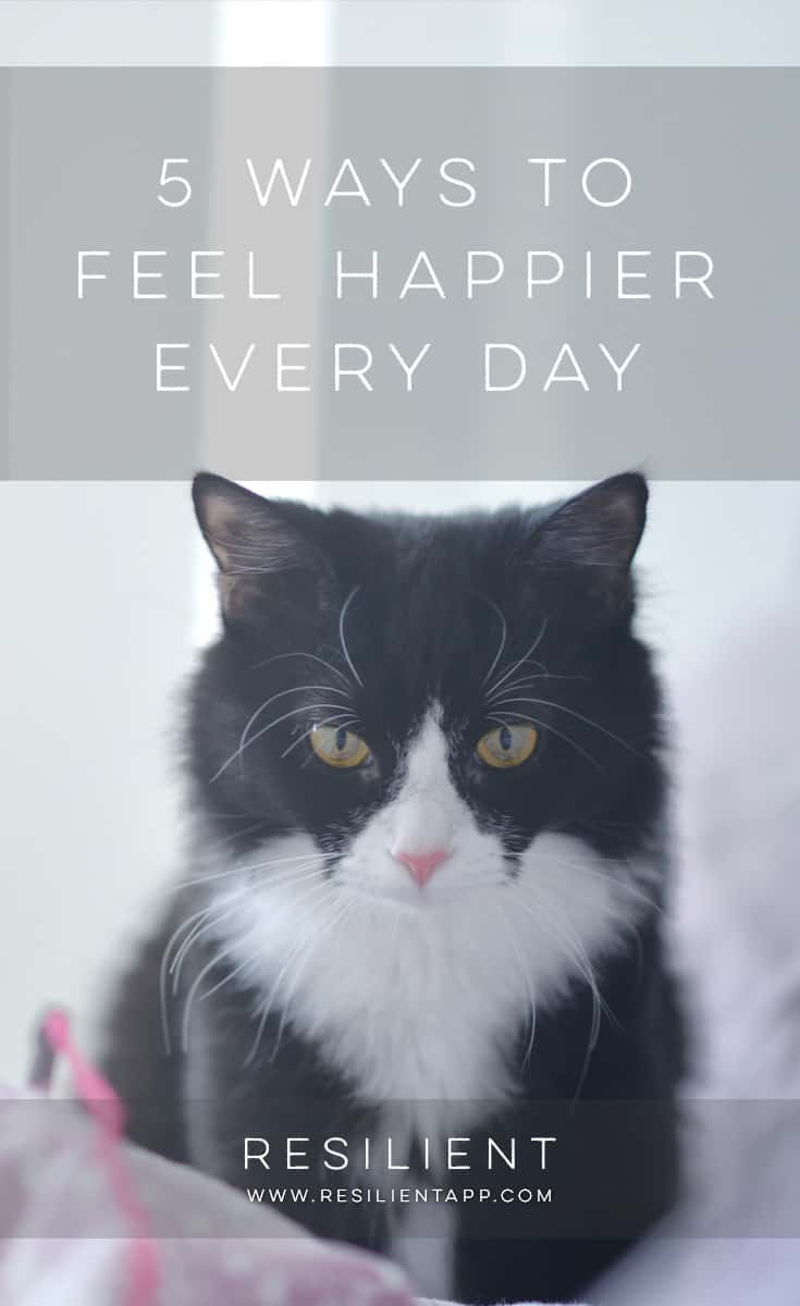 """Happiness comes from within. Only you can make yourself happy. Money, relationships, and other external factors cannot give you happiness, as explained in this Tibetan proverb: """"Seeking happiness outside of ourselves is like waiting for sunshine in a cave facing north."""" Here are five ways to feel happier every day, regardless of your circumstances."""