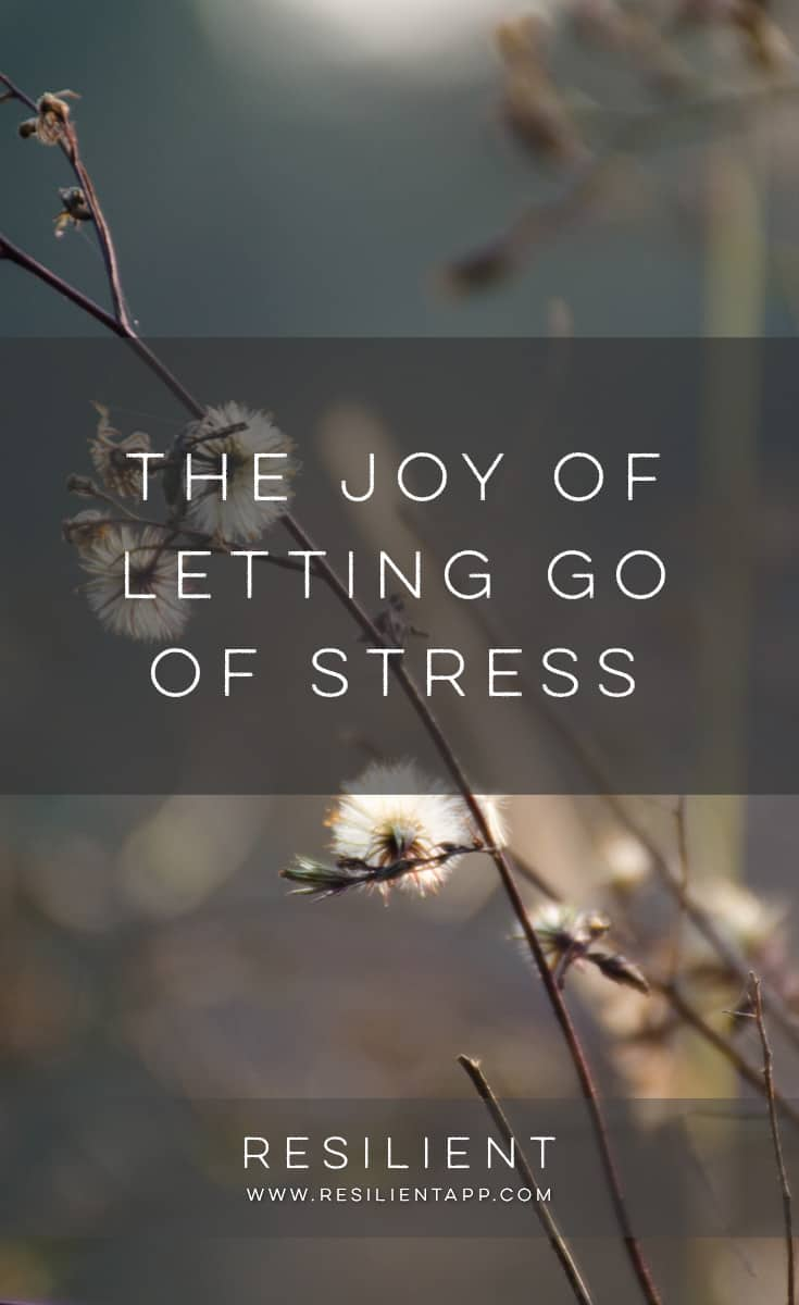 The holiday season can generally be one of the most stressful times of year. That's on top of most families being so stressed they aren't able to spend quality time together. Is stress building up in you? Is it lowering the quality of your life a bit? Here's the joy of letting go of stress.