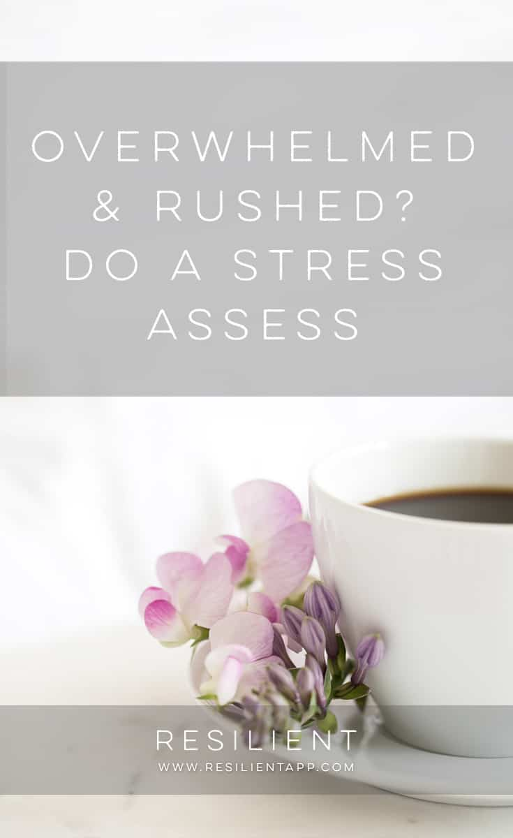 If you find yourself rushing from task to task, worried that you don't have time to do everything … If you are feeling a high amount of stress and are just overwhelmed by the number of things you have to do … You might try doing a Stress Assess.