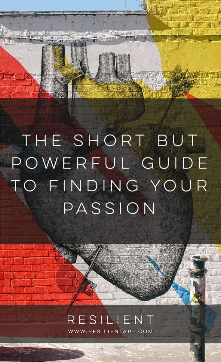 Following your passion can be a tough thing. But figuring out what that passion is can be even more elusive. I'm lucky — I've found my passion, and I'm living it. I can testify that it's the most wonderful thing, to be able to make a living doing what you love. This is the short but powerful guide to finding your passion.