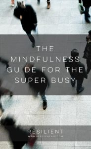 The Mindfulness Guide for the Super Busy