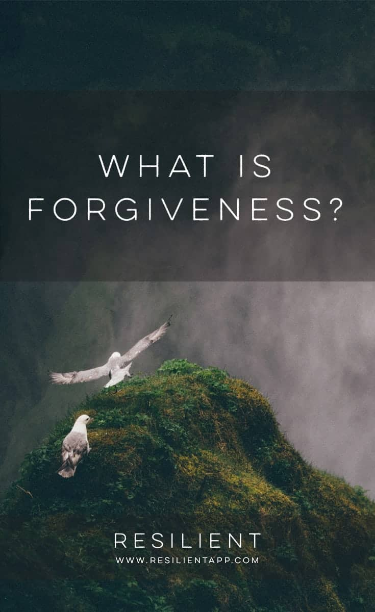 Forgiveness is often talked about, sometimes practiced and seldom truly understood. Perhaps it is because it is misunderstood that many of us struggle to grasp it and make it work for us. Certainly, we are given plenty of reasons why we should forgive; many of them seem to centre on the offender. But what is it really? And what does it mean to me, the one who has been hurt? What is forgiveness?