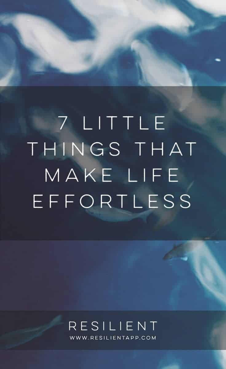 Life can be a huge struggle at times, and for years it was a struggle for me. I've been learning what causes that struggle, and what works in making life easier, better, smoother. Here are 7 little things that make life effortless.