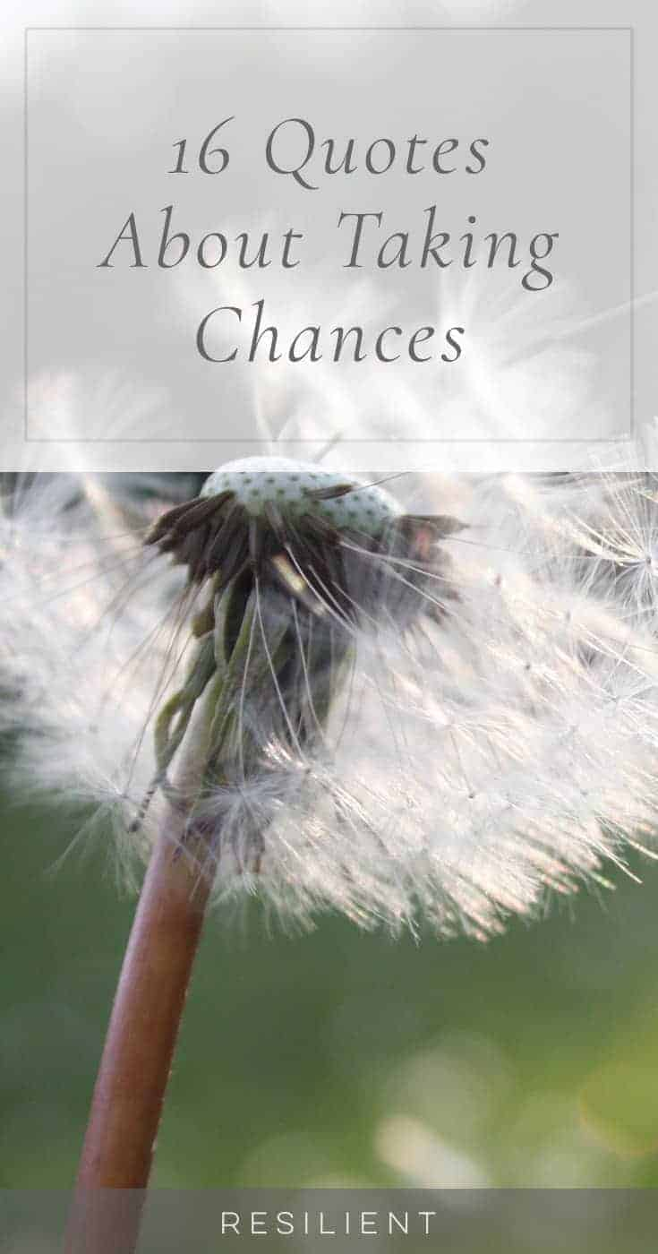 16 Quotes About Taking Chances