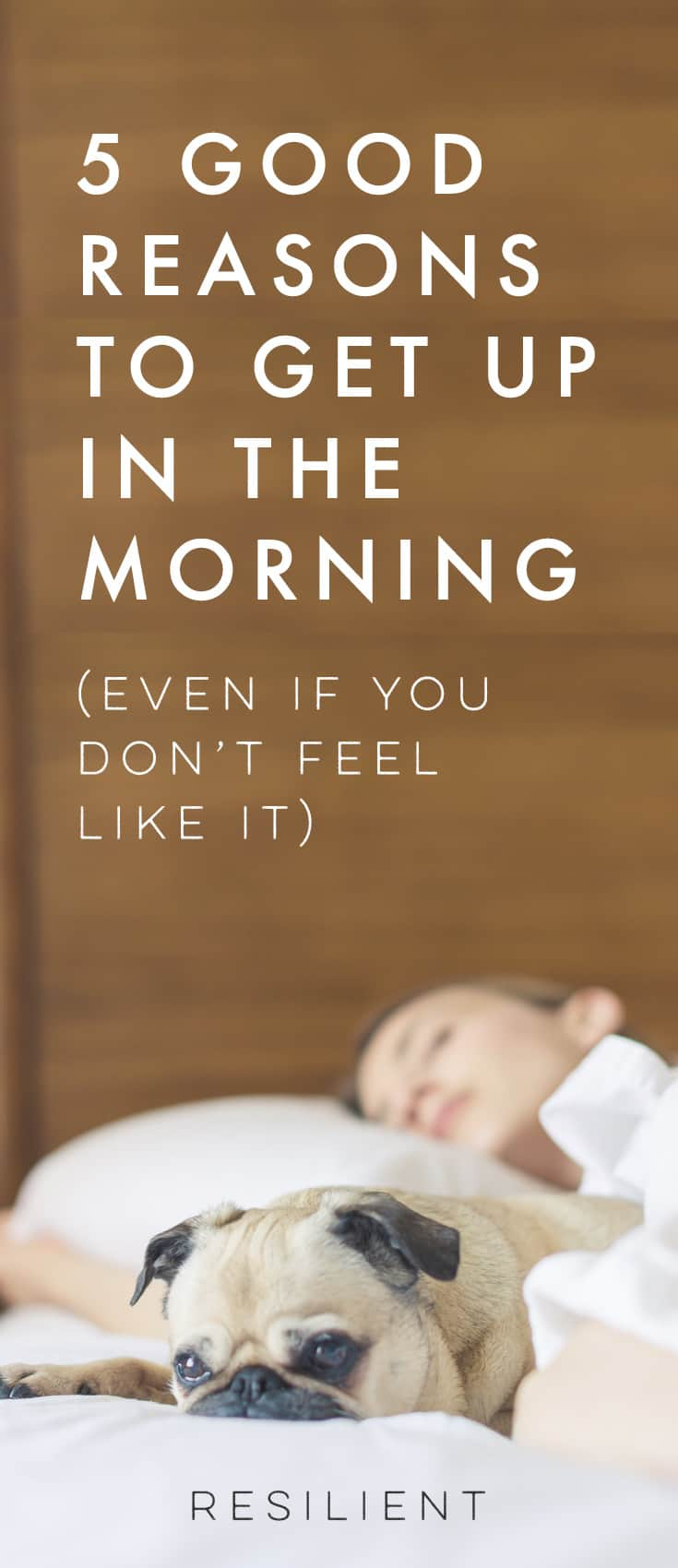 Next time you're thinking of staying in bed for no particular reason, think again. Climbing out of your warm, cozy bed can take willpower, especially if you're feeling anxious or down in the dumps. But it's worth making the effort for all sorts of reasons. Here are five irresistible reasons to get up in the morning if you need a little encouragement.