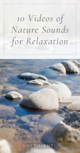 10 Videos of Nature Sounds for Relaxation