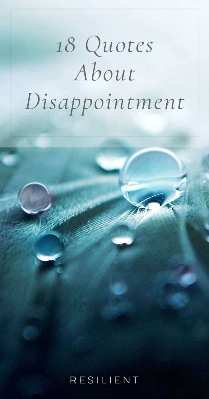 Disappointments are an unfortunate but somewhat inevitable part of life. However, there is always a lesson to be learned or new strength to be gained from the situation. Here are 18 quotes about disappointment.