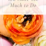 5 Tips for When You Have Too Much to Do