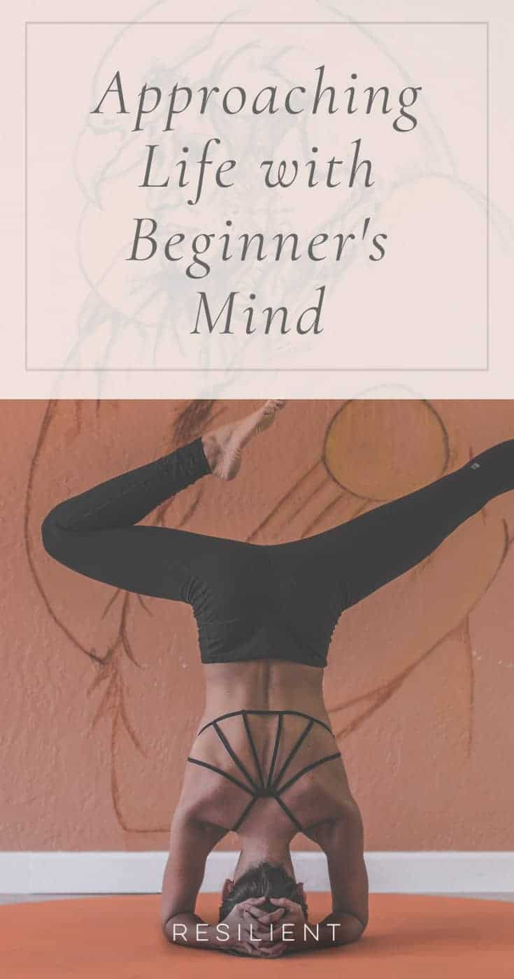 A lot of our troubles could be solved by one simple practice. A lot of joy could be found with the same practice. And it is simple:practice seeing life with a beginner's mind.