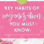 4 Key Habits of Organization