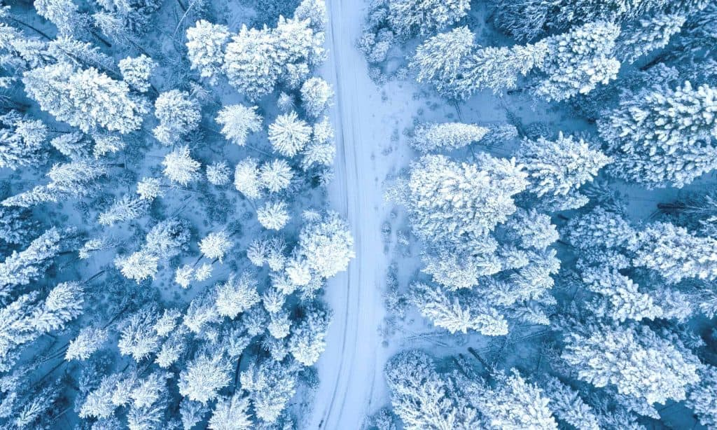 Winter Quotes | Quotes About Winter