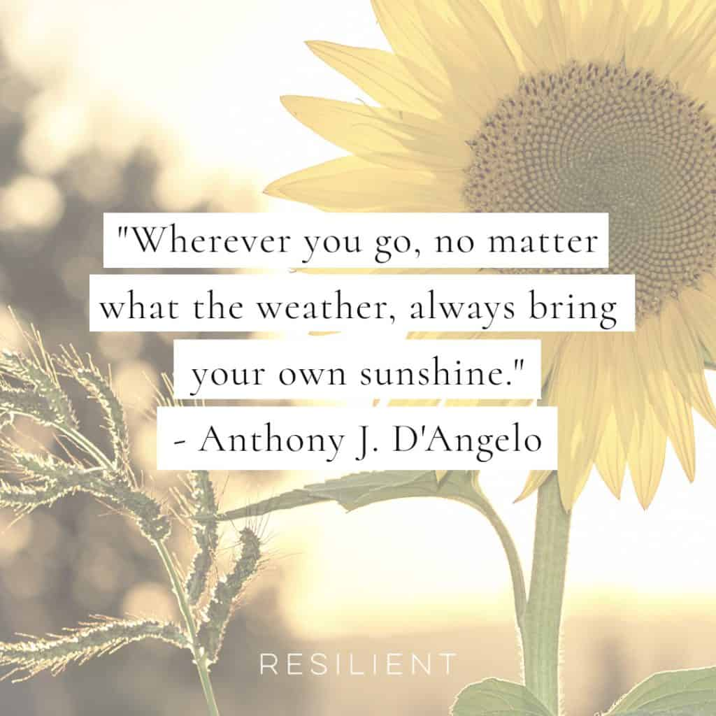 25+ Sun Quotes and Sunshine Quotes - Resilient