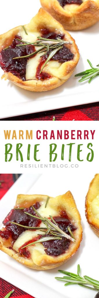 Warm Cranberry Brie Bites