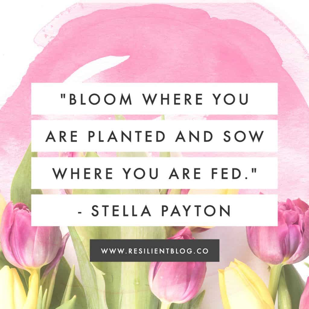 Quotes About Blooming | Bloom Quotes