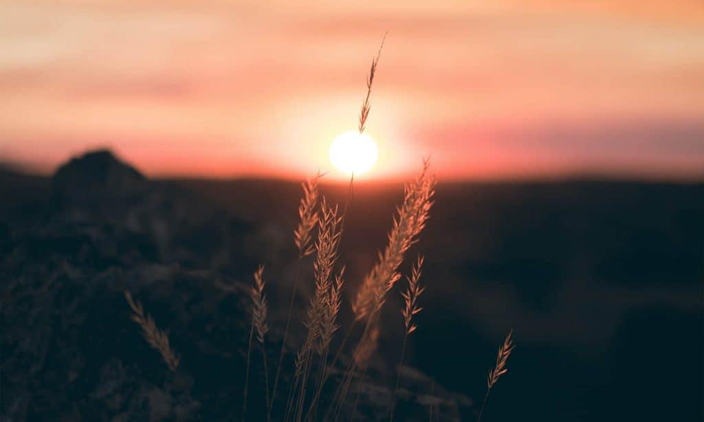 Quotes About Sunrises | Inspirational Sunrise Quotes