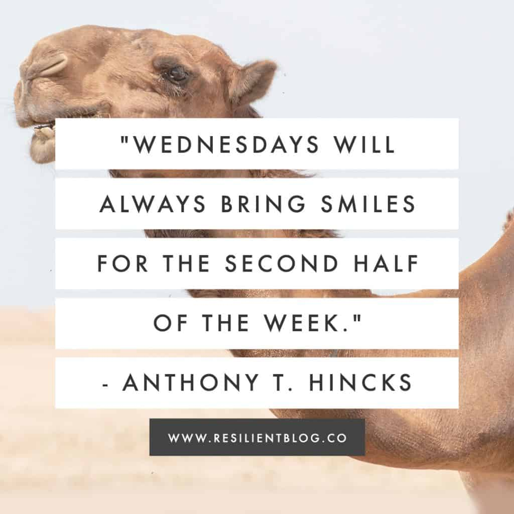 Wednesday Quotes | Quotes About Wednesday